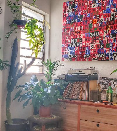 Selva urbana: como cuidar e cultivar plantas durante o isolamento social