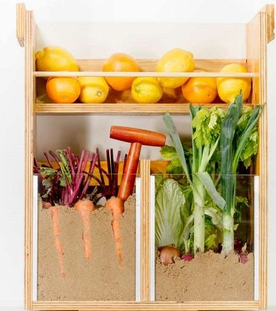 Casal usa caixas para criar sistema que conserva alimentos sem eletricidade
