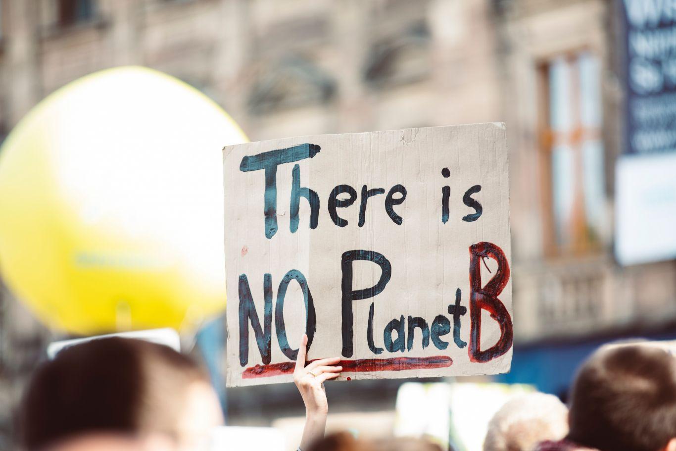 consciência ambiental americanos 3