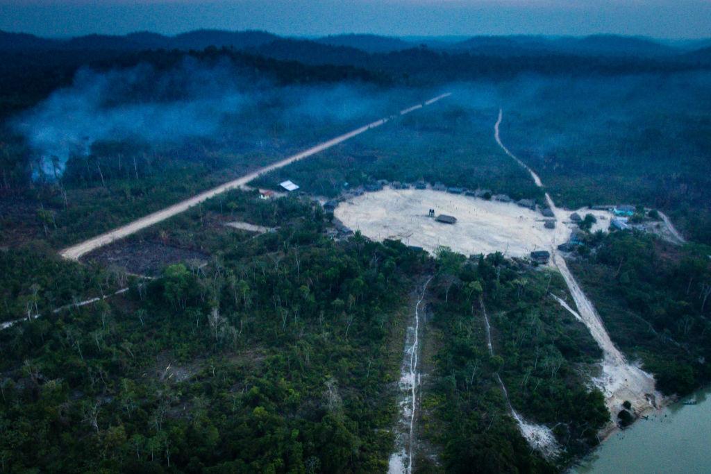 desmatamento amazônia pandemia 1