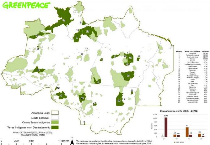 desmatamento amazônia pandemia 3