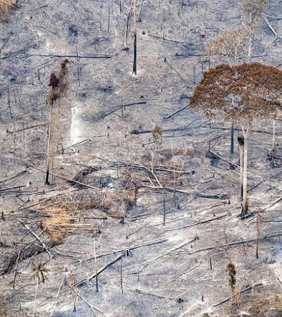 Garimpeiros avançam e desmatamento em terras indígenas aumenta 59% durante a pandemia