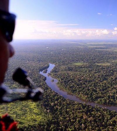 Brasil caminha para novo recorde de desmatamento da Amazônia