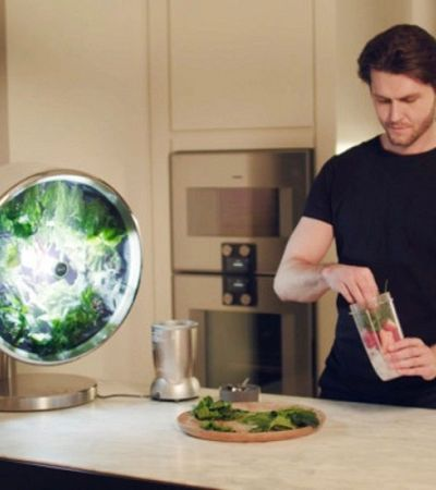 Designers criam jardim totalmente autônomo que pode viver na sua cozinha