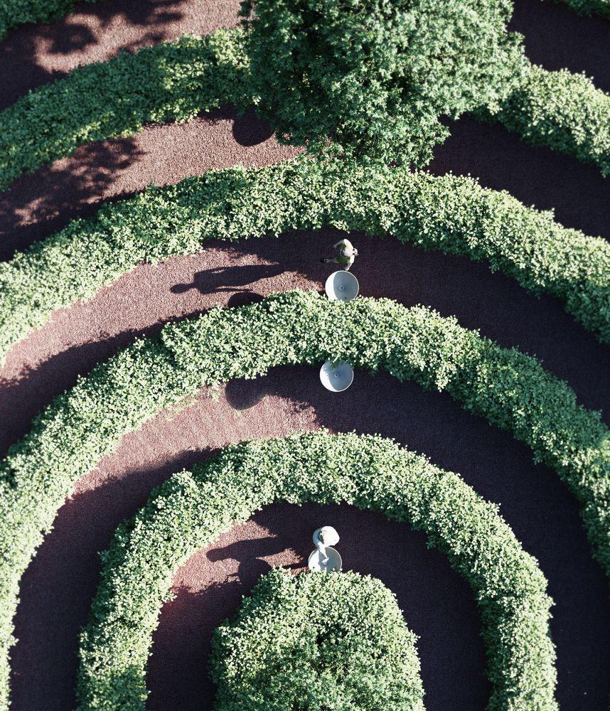 parque labirinto viena 2