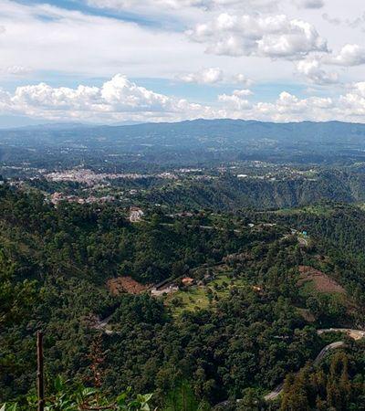 Refugiados começam vida nova na Guatemala como guardiães de florestas