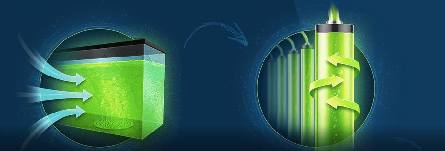 biorreator algas gas carbônico 5