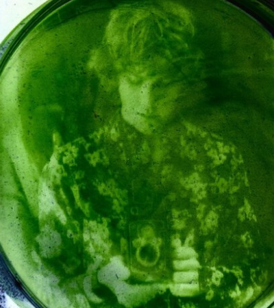Estudante desenvolve método inédito de impressão de fotos em algas