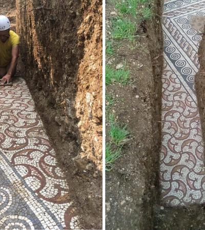 Mosaico romano totalmente preservado é descoberto em vinícola italiana