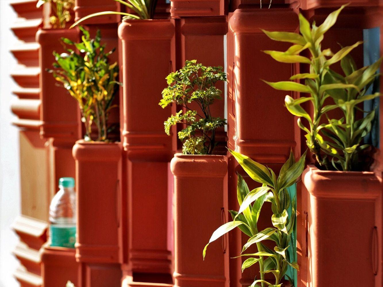 telhas de barro parede verde 1
