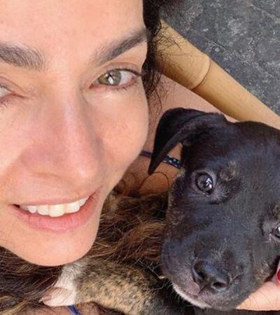Claudia Ohana se diz surpresa com ONG que colocou cachorros devolvidos por ela para adoção
