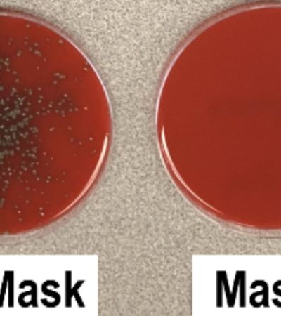 Experimento mostra a diferença de espirrar com e sem máscara