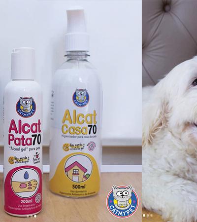 Empresa lança álcool gel para pets que não prejudica saúde do animais