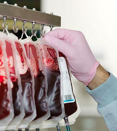 STF leva a melhor e Anvisa tem que revogar proibição de doação de sangue por homens gays