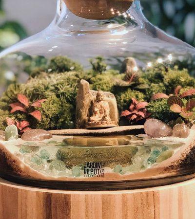 'Jardim no Pote' cria ecossistemas autossustentáveis em recipientes de vidro