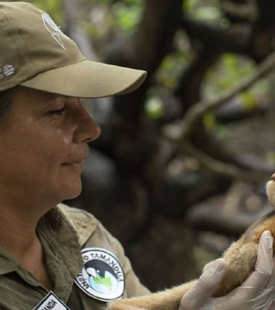 5 pesquisadoras brasileiras de meio ambiente que são referência internacional
