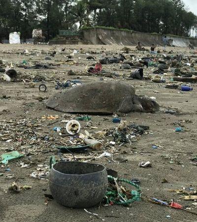 Bangladesh vive surto de mortes de tartarugas por ingestão de plástico