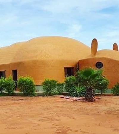 Tatu Escola construída para indígenas do Mato Grosso viraliza no Twitter