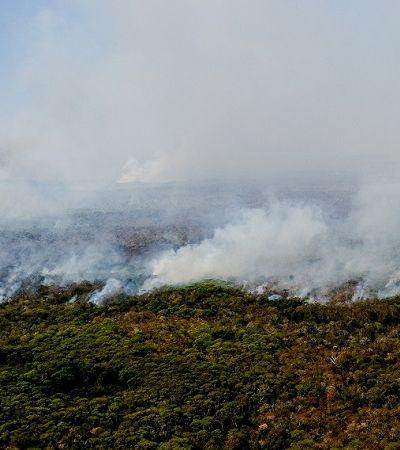 Pantanal arde em chamas e registra crescimento de 200% nas queimadas