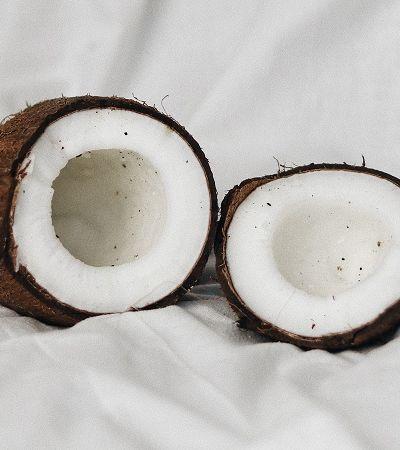 Produção de óleo de coco ameaça espécies vulneráveis