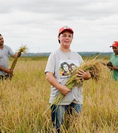 MST é o maior produtor de arroz orgânico da América Latina e pacote pode sair por R$ 5