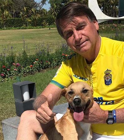 Presidente contesta aumento de pena para maus-tratos aos animais e fará enquete no Facebook