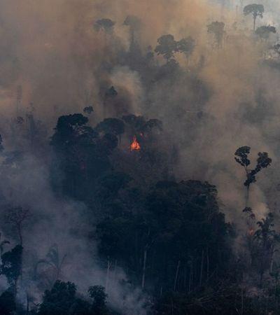 Brasil pode sofrer boicotes comerciais por gestão desastrosa do meio ambiente