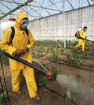 Brasil é o 2º país que mais compra agrotóxicos proibidos na Europa, apontam dados inéditos