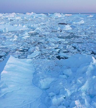 Pedaço de gelo quase do tamanho do Recife se descola da última plataforma do Ártico