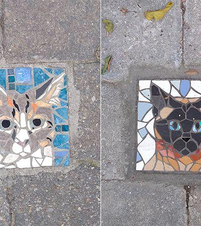 Na Bélgica, a moda é imortalizar os pets em mosaicos na calçada