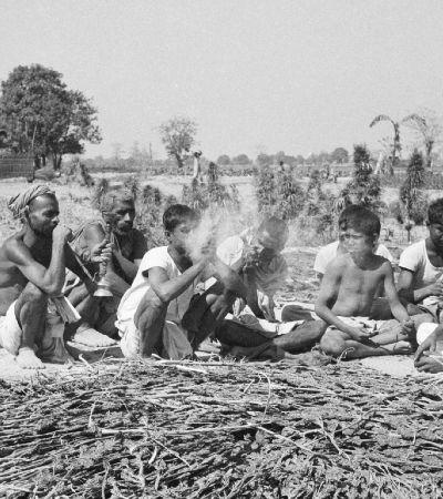 Maconha começou a ser criminalizada com lei racista contra negros escravizados