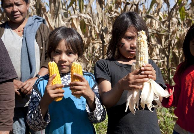 Veganismo não é novidade no Brasil e essa thread desconstrói esse mito