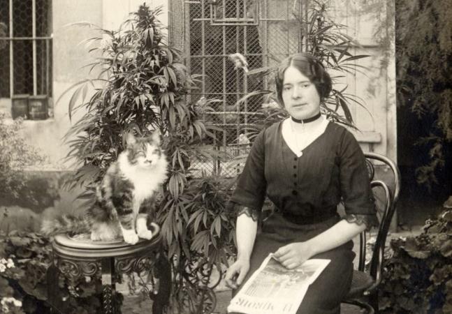 Uma parisiense com seu gato e seu jardim de maconha nos anos 1910 não quer guerra com ninguém