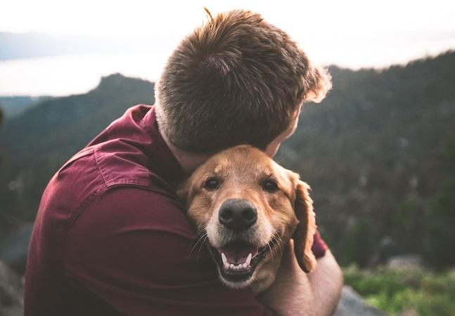 Corações de cães disparam quando donos apenas dizem que os amam, aponta estudo