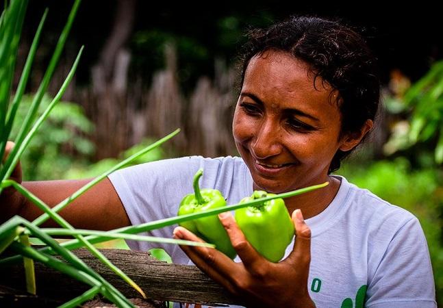Plantando alimentos no quintal ela se tornou referência gastronômica no Piauí