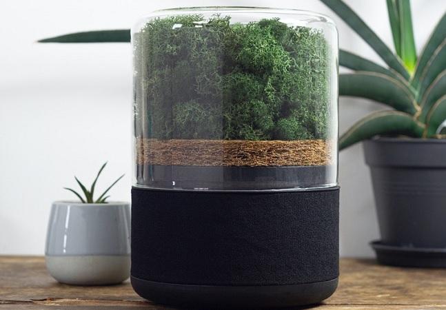 Purificador leva mini floresta até sua casa para limpar o ar de forma sustentável