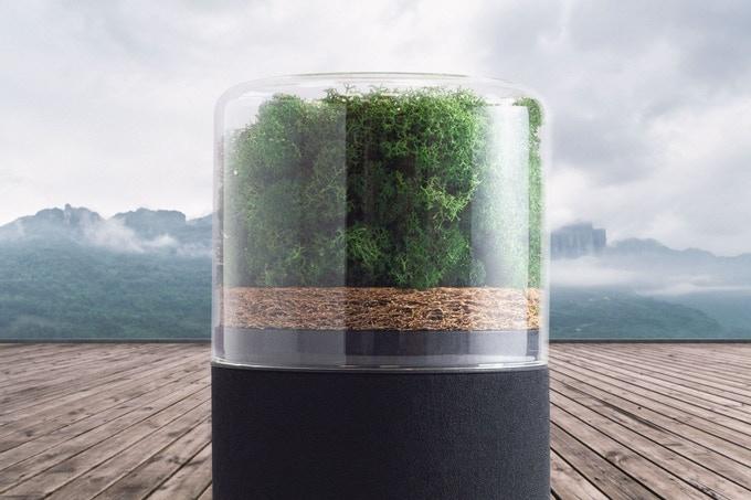 Briiv Air Filter: um purificador de ar que funciona como uma mini floresta dentro da sua casa.