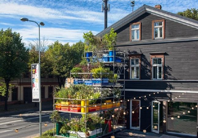 Sistema de cultivo vertical pode ser solução para hortas urbanas