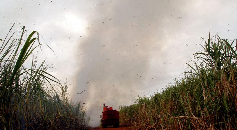 Imagem de incêndio em canavial do interior de São Paulo