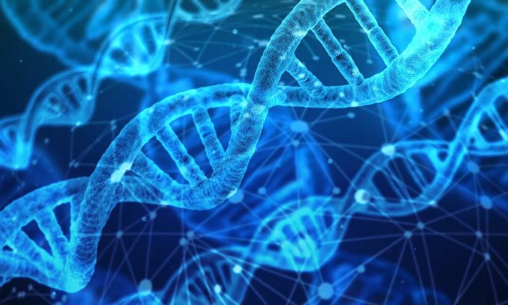 DNA da redação: fizemos um teste para saber mais sobre nossa ancestralidade e nos surpreendemos
