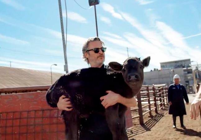O dia em que Joaquin Phoenix salvou uma vaca do abate e faz amizade com dono do matadouro