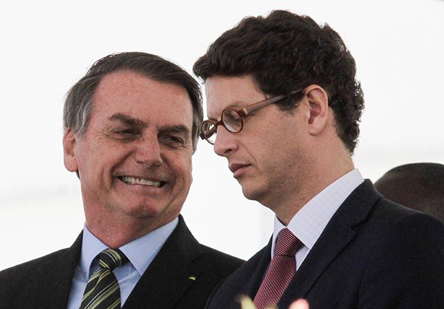 Ipê tem sobrevivência ameaçada após canetada do governo Bolsonaro; entenda
