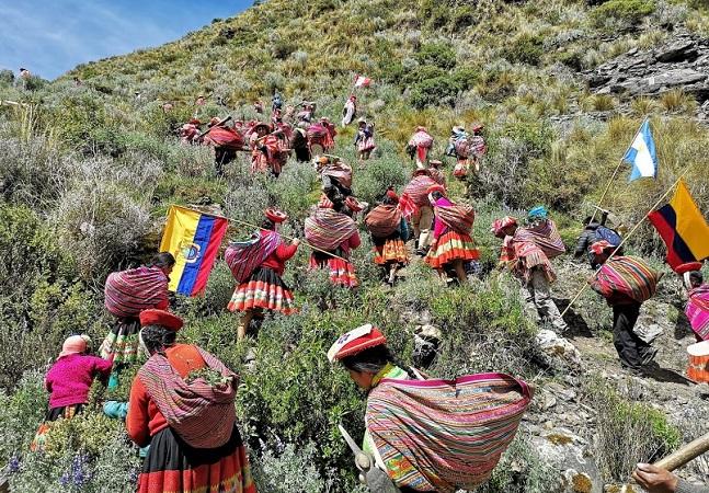 Cordilheira dos Andes fica mais verde graças ao trabalho de comunidades indígenas