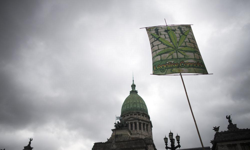 Maconha medicinal para uso próprio é legalizada na Argentina; veja diferenças com Brasil