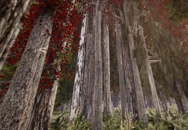 Floresta em realidade virtual mostra o futuro das árvores impactadas pelas mudanças climáticas