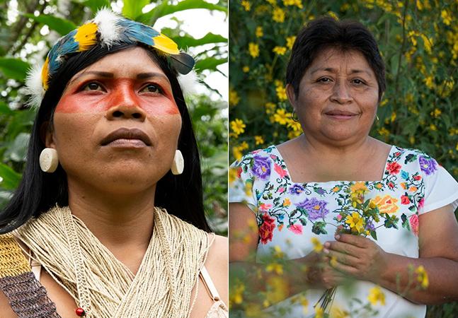 """""""Nobel Verde"""" anuncia quem são os ativistas ambientais vencedores em 2020"""