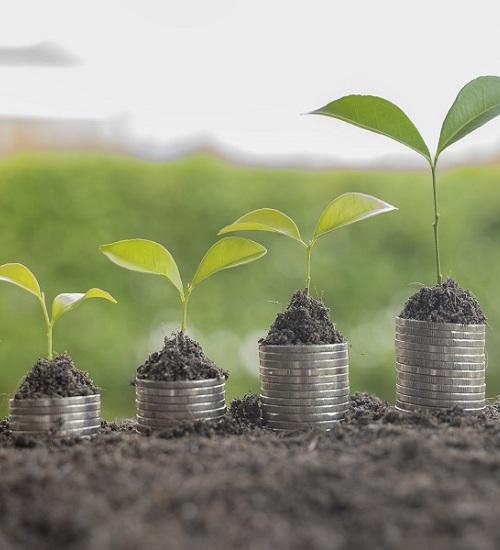 Economias do Futuro | parte #1 | Pensar modos inovadores de viver e conviver