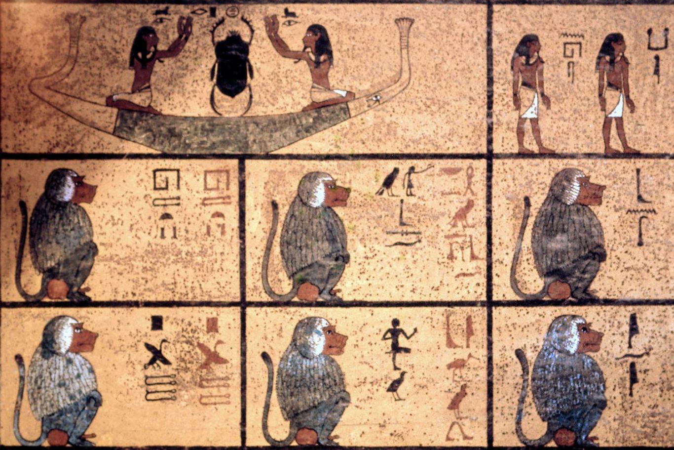 babuínos desenhados na tumba de Tutancâmon