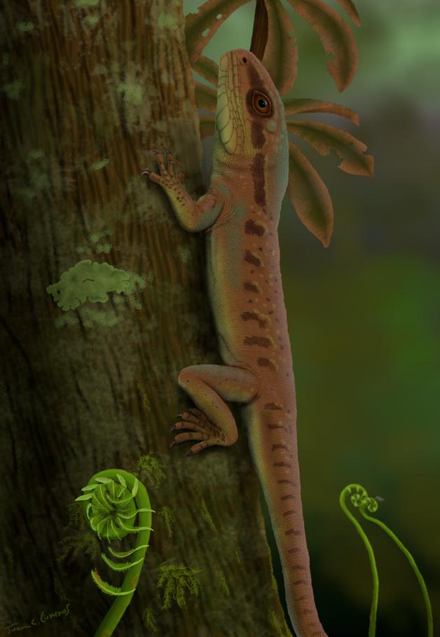 representação do Karutia fortunata, lagarto pré-histórico descoberto no Piauí
