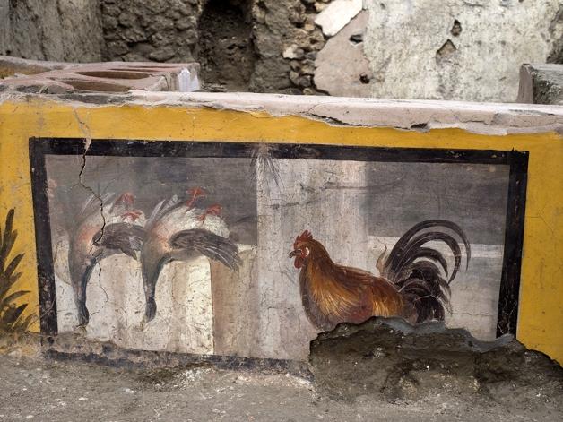 Detalhe de afresco mostrando pássaros e uma galinha em lanchonete encontrada em Pompéia